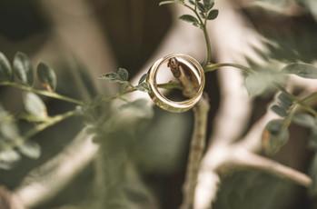 ¿Cuándo encargar las alianzas de casamiento?