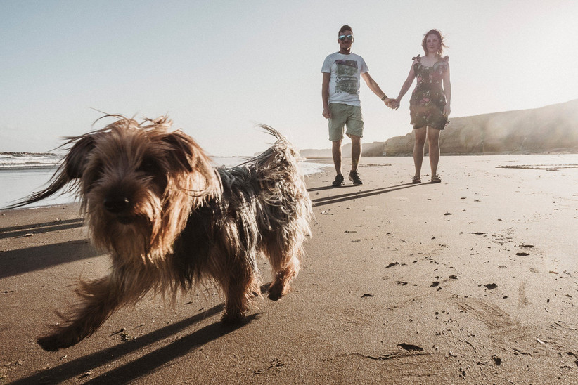 novios con perro sesión preboda en la playa