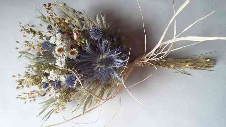 Flores del Manantial