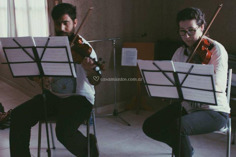 Violines de Voler