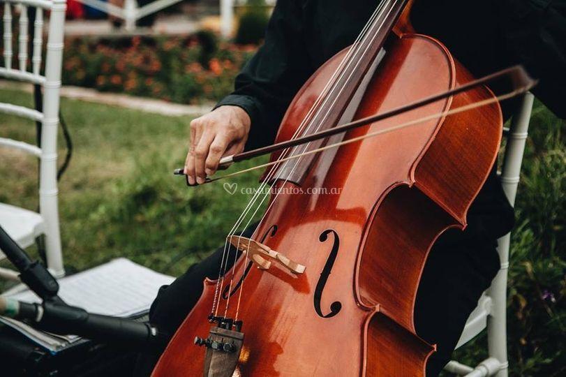 Musica en los jardines