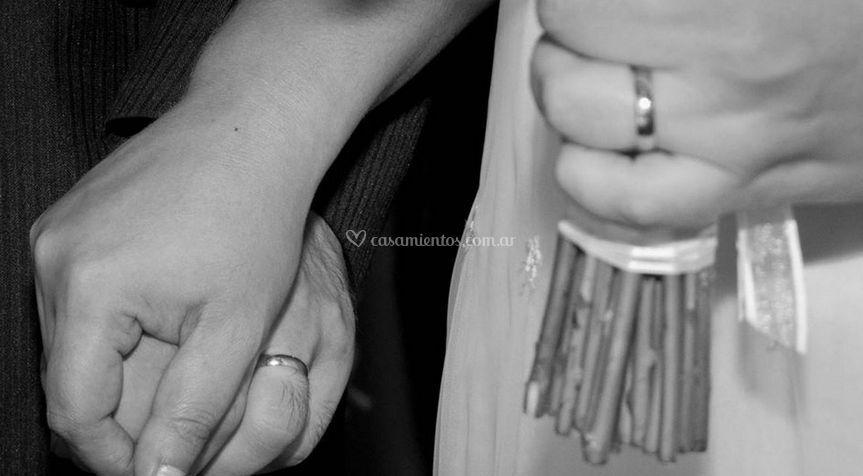 Vista de los anillos
