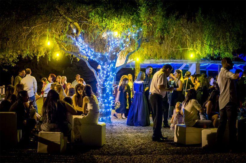 Casamiento de noche