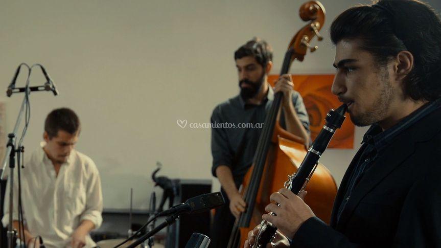 Flip Cats Mono, Julián y Tom