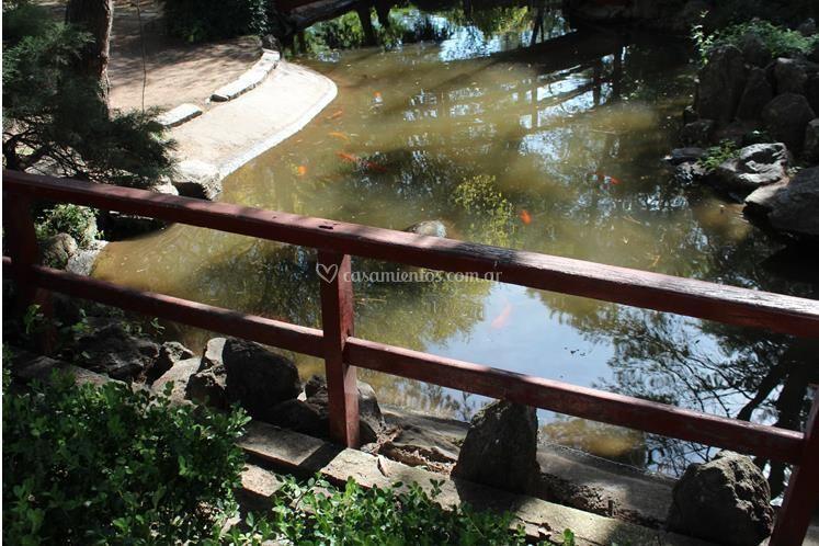 Puente y lago