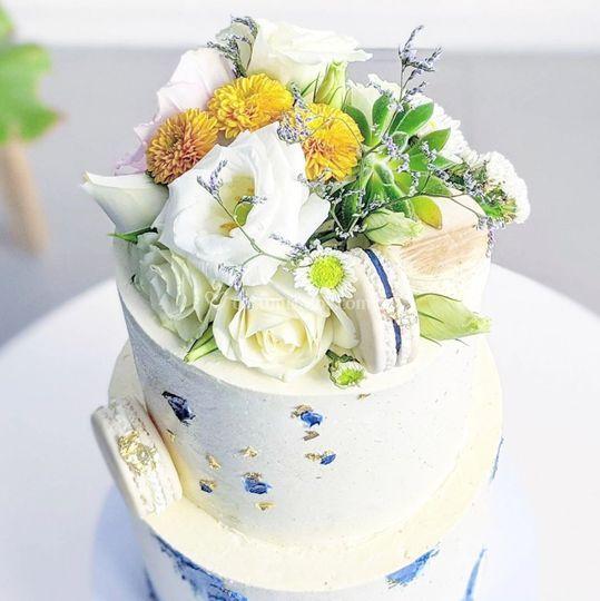 Flores y suculentas