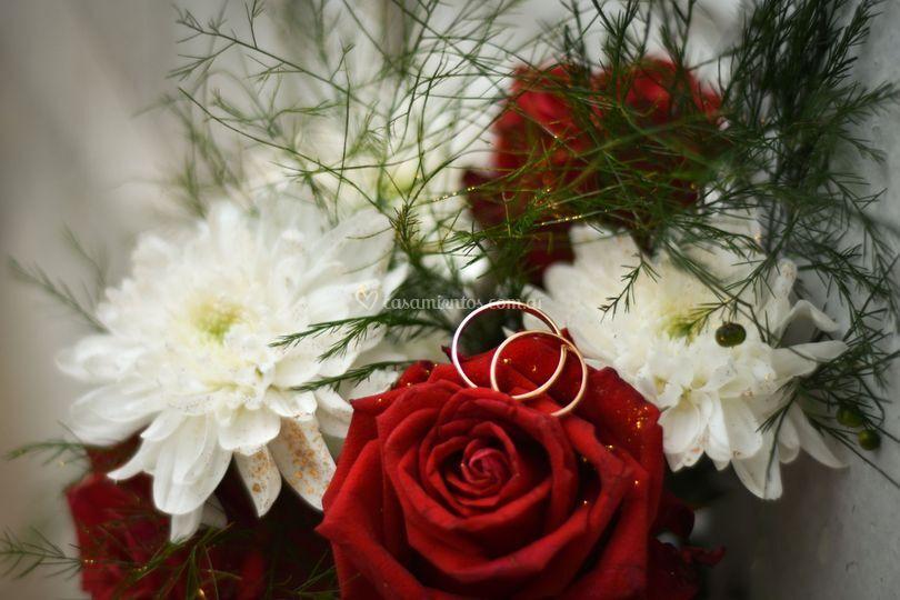 Ramo y anillos