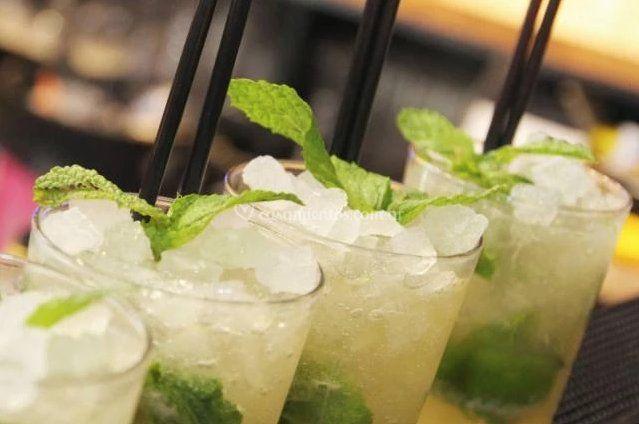 Barra Drinks