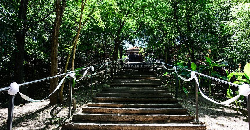 Bosque de Piedras fiestas & eventos