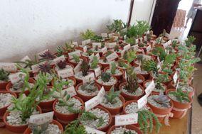Jardín - Tienda de Plantas