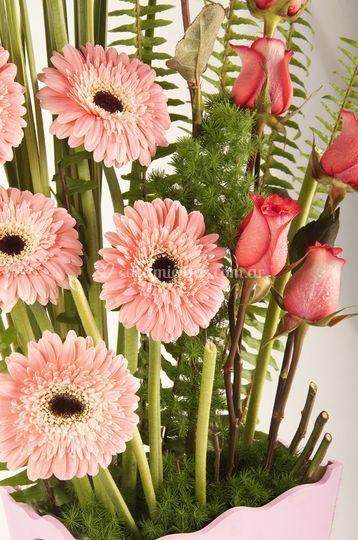 Gerberas y rosas ecuatorianas