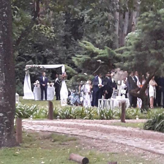 Hortensias ceremonia