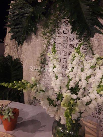 Ceremonia boho