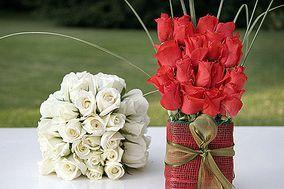 María Antonieta's  Flowers