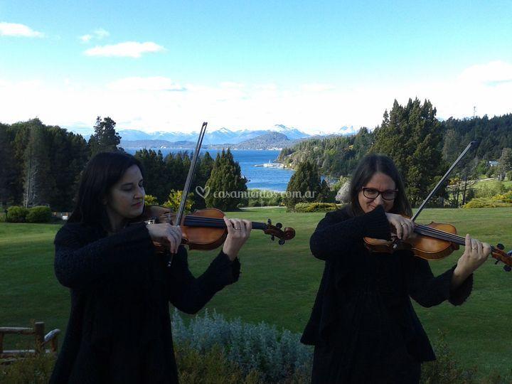 Violines en Bariloche