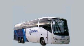 Variedad de autobuses