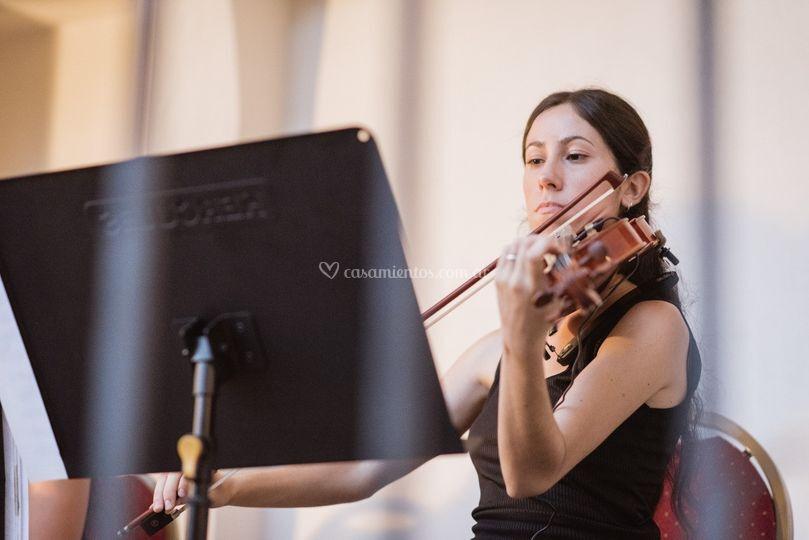 Recepción con violín y arpa