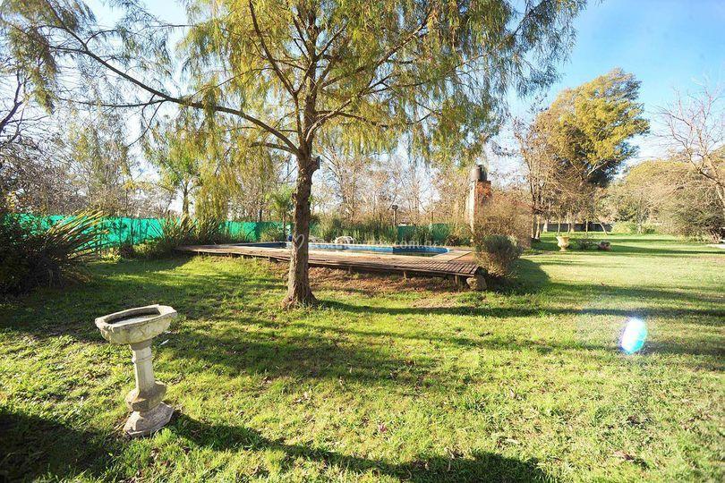 Pileta y Parque