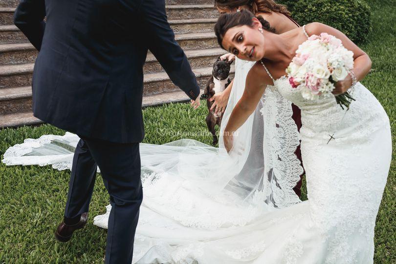 Previa de novia