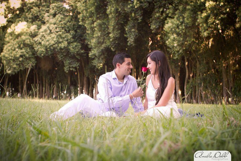 Romanticismo y rosa
