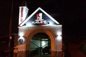 Magave