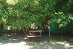 Frondosa arboleda de Quinta La Aparecida