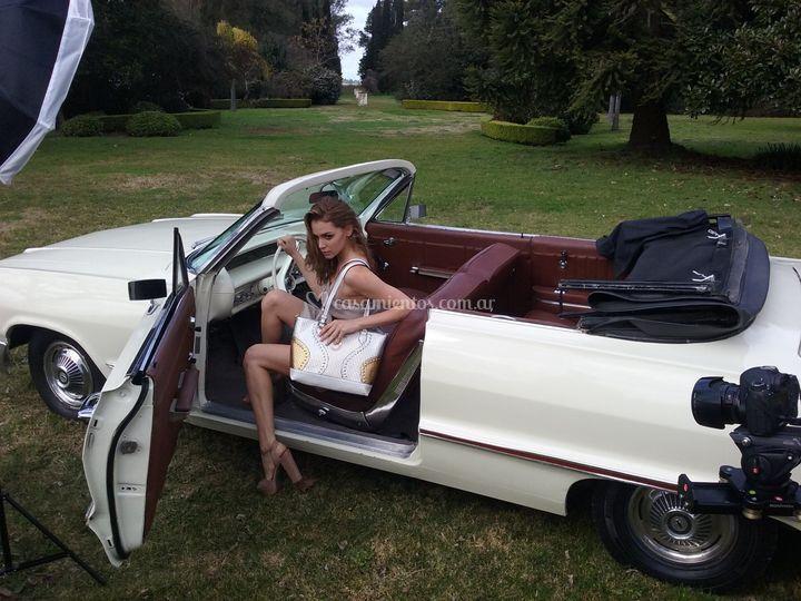 Impala convertible crema