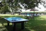 Pool y pinpon para tu fiesta
