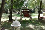 Vintage y rural!