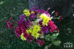 Coloridos arreglos florales