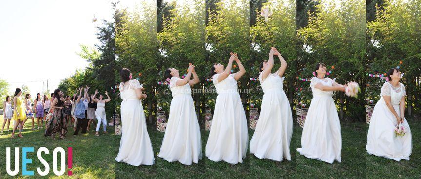 Ueso bodas
