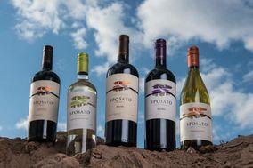 Sposato Family Vineyards