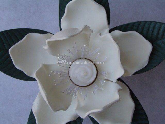 Detalle de las magnolias