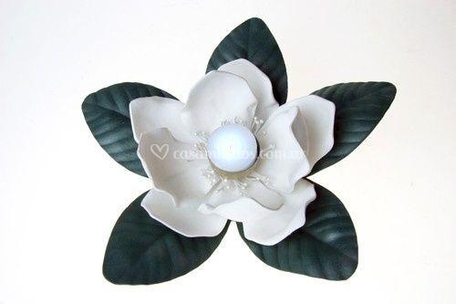 Magnolia con luz led