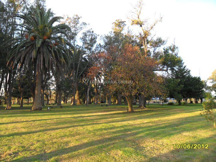 Parque de 3 hectareas