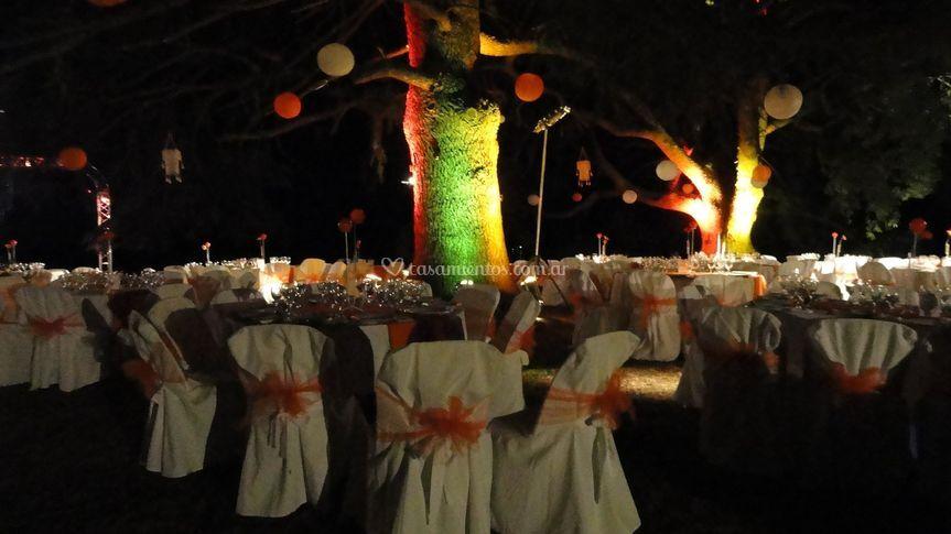 Eventos en el parque de noche