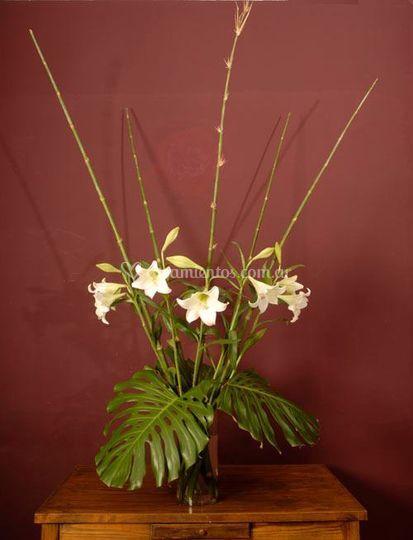 Azucenas, philodendros y bambu