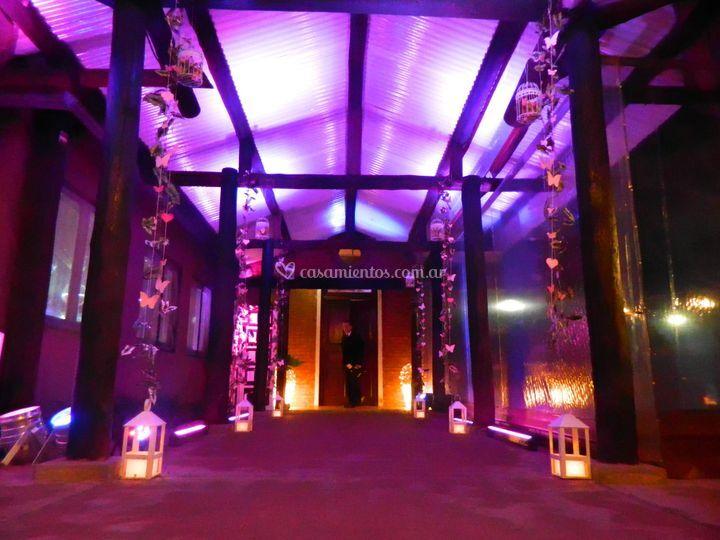 Campo el bamboo acceso salón