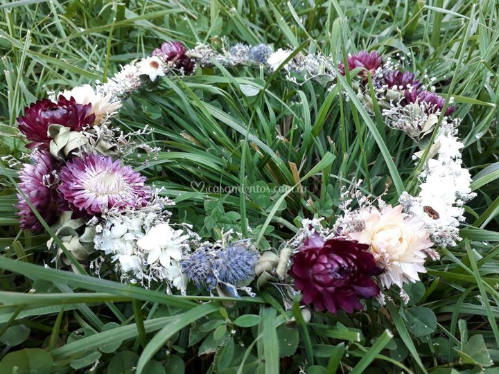 Coronita flores secas/frescas