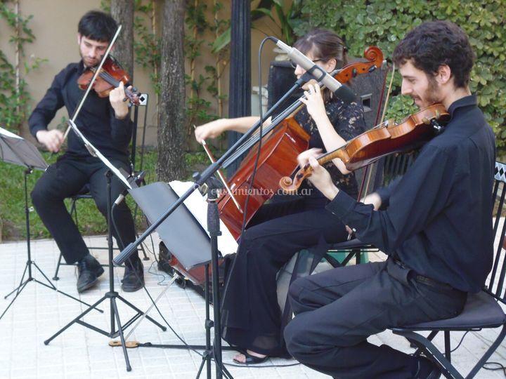 Dos violines y cello ceremonia