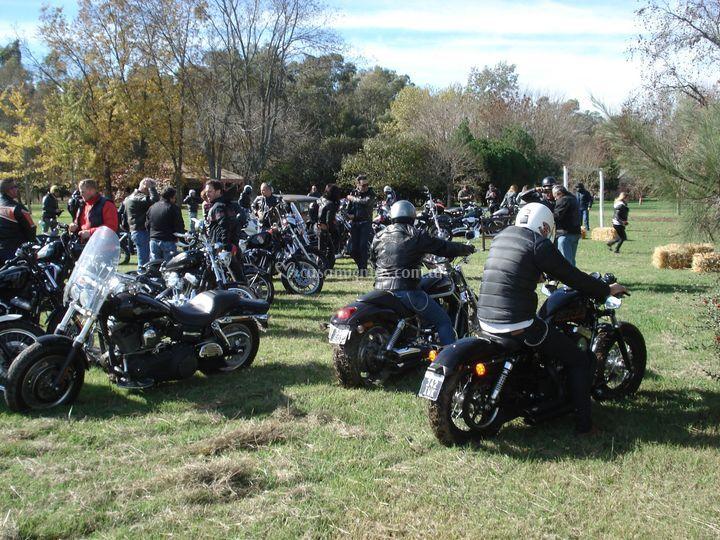 Reunión de Harley