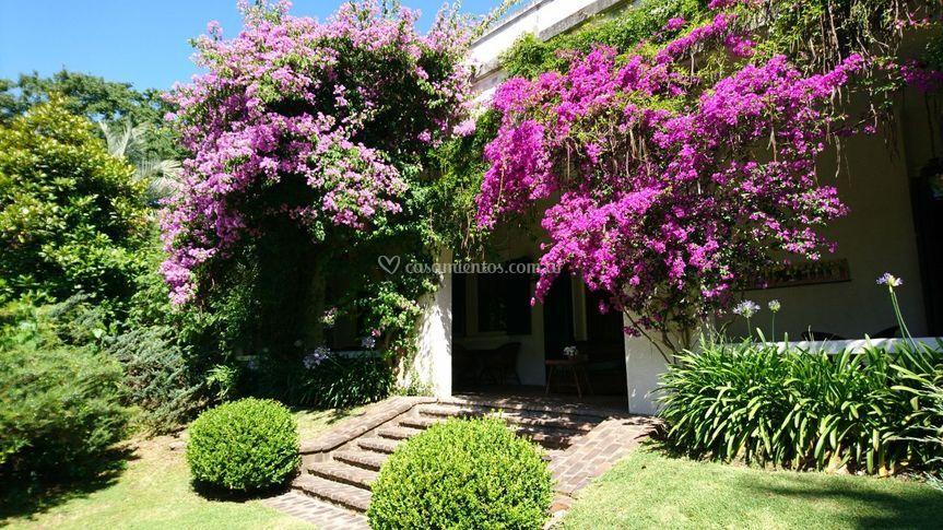 Jardín floreado todo el año