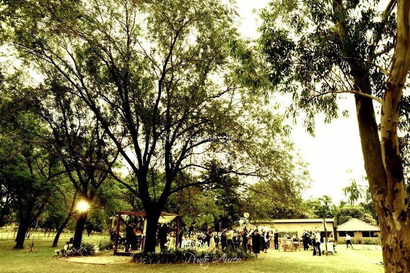 Nuestro parque 2