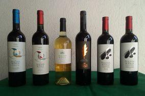 Pequeña Bodega - Vinos
