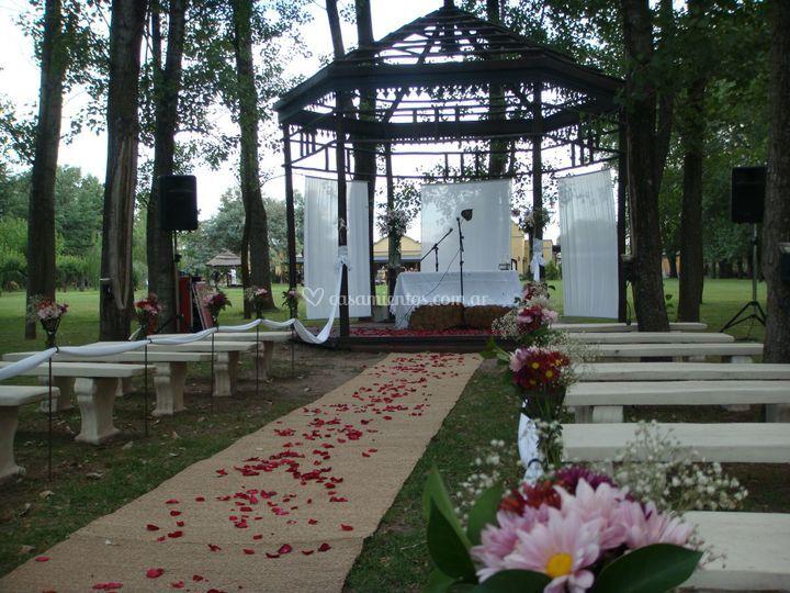 Altar en bosque de alamos