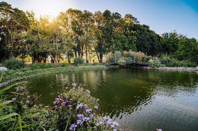 Parque y laguna