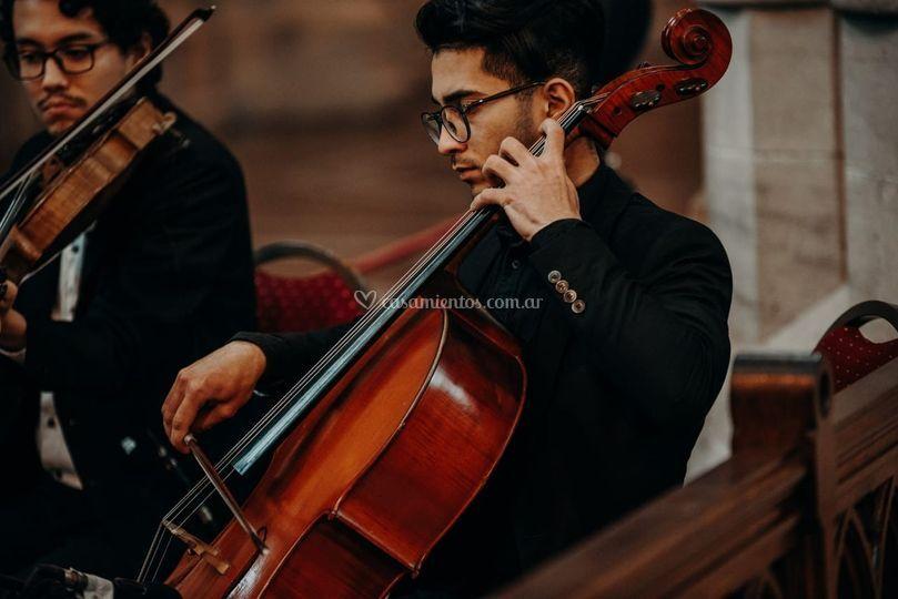 Viola y cello