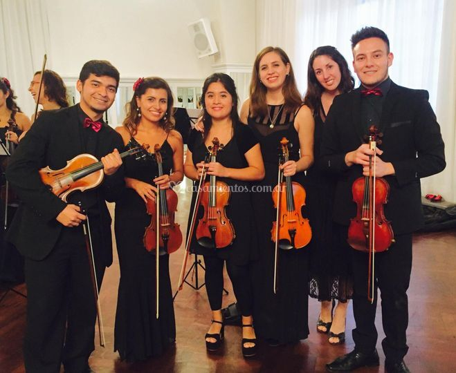 Violinistas - vals