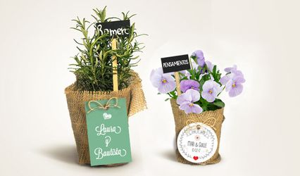 The Growing Gift 2