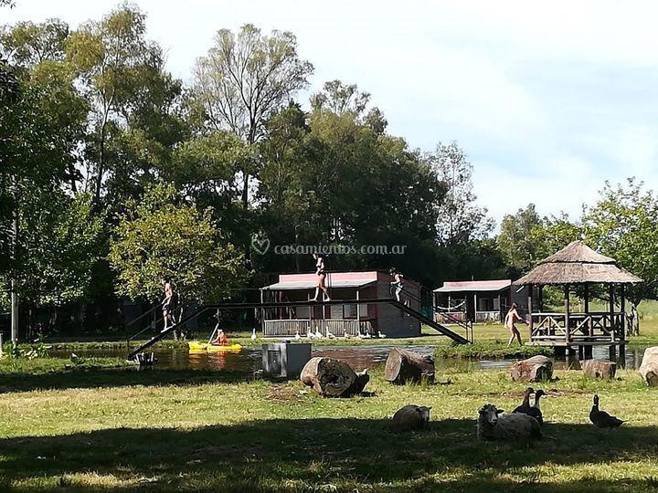 Cabañas, laguna, animales